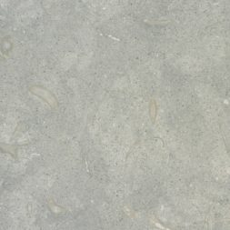 limestone-seagrass-close-up