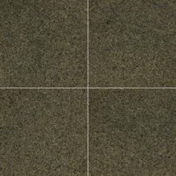 Tunis-Green-12x12-polished-Granite